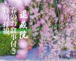 2021観桜会バナ-