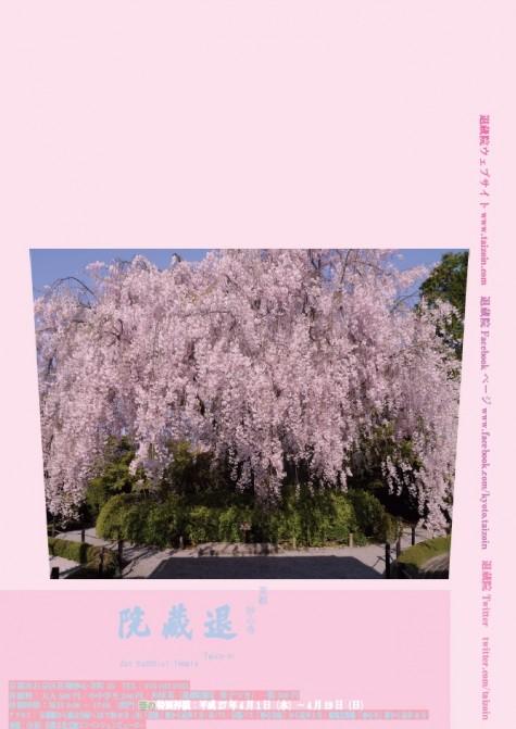 15春のポスター